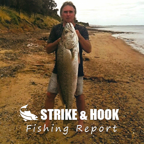 Port lincoln fishing report 29 01 2015 strike hook a for Sa fishing 5 for 15
