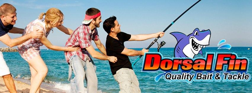 dorsal-fin-banner.jpg