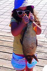 Ricki First carp