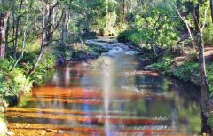 Minnow River, Beaulah