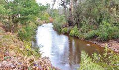Minnow River, Kimberley