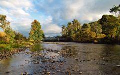Looking upstream at Hoggs Bridge, Mersey River.