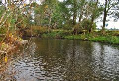Good trout water, Meander River.