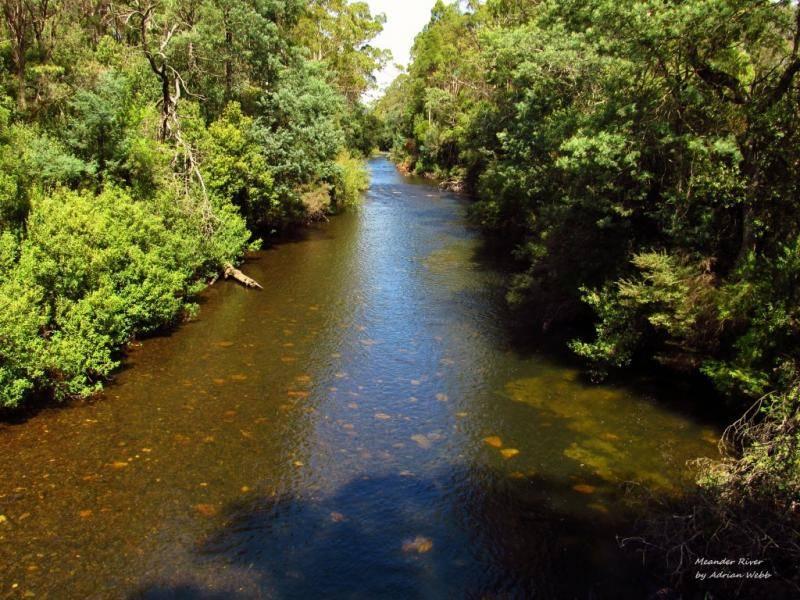 Meander River looking upstream, Barrett's Bridge. (Medium).JPG