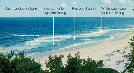 Beach-Surf.jpg.75cfad78a10ba27886c02c652dfbedf2.jpg