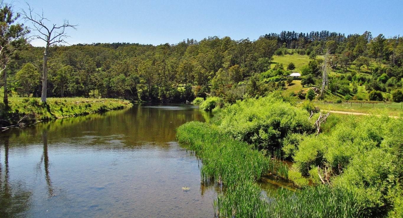 View downstream from the bridge. (Medium).JPG