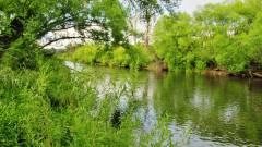 Mersey River. 1727 (Medium).JPG