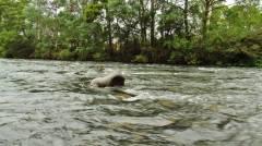 The river running a little higher than I wanted. (Medium).JPG