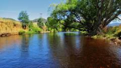 Nice trout water..JPG