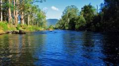 Deep & dark water, Leven River..JPG