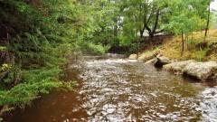 Dasher River running fast after decent rainfall.
