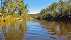 Glassy light tannin water., Mersey River. (Medium).JPG