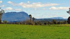 Mt Roland, view from Kimberley. 3222 (Medium).JPG