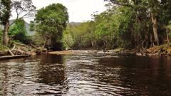Leven River. (Large) (2).JPG