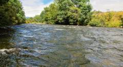 This stretch of medium-fast water gave up 8 trout..JPG