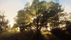 Sun in on the rise..JPG