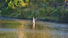 A fly fisher from Hobart trying his luck in the Mersey River..JPG