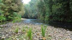 Scenic stretch of water.(Medium).JPG