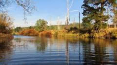 Mersey River. 7655 (Medium).JPG