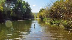 Meander River. 7351 (Large).JPG
