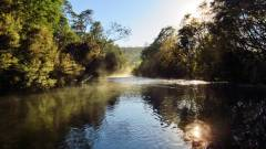 Very cool morning to be in a river..JPG