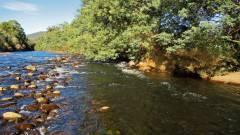 Meander River. 7441 (Medium).JPG