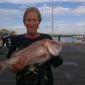 hazfish